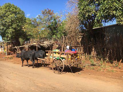 Slow road à Madagascar