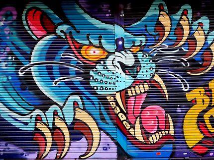 Street art sur boutique (anonyme)