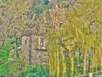 Maison en pierres avec saule