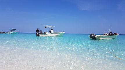 Paradise island 2018