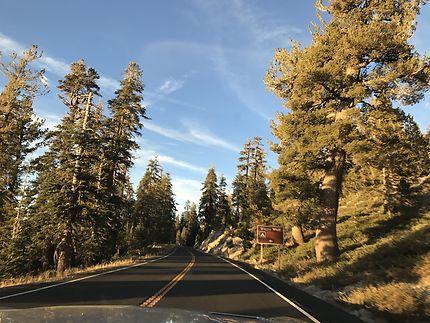 Sur les routes américaines, en pleine nature