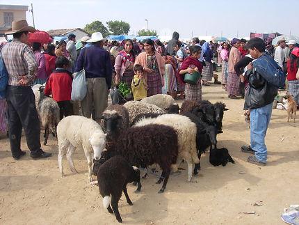 Marché aux bestiaux de San Francisco El Alto