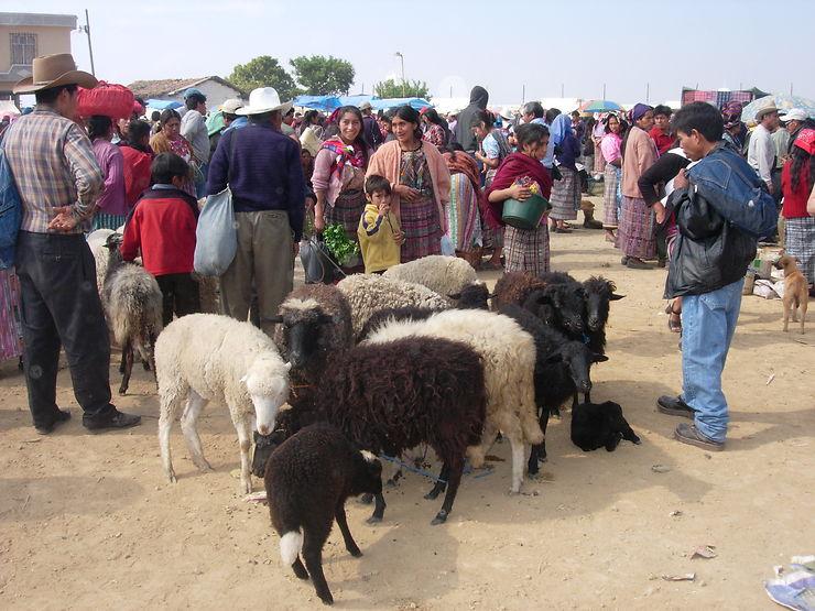 Marché aux bestiaux de San Francisco El Alto, Guatemala