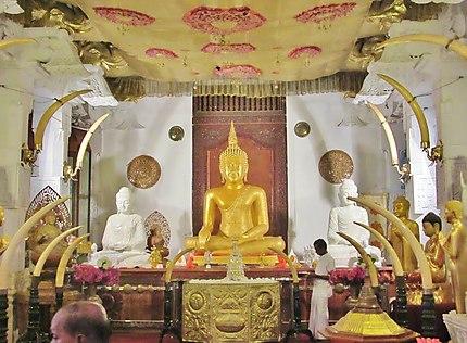 Relique de la dent de Bouddha
