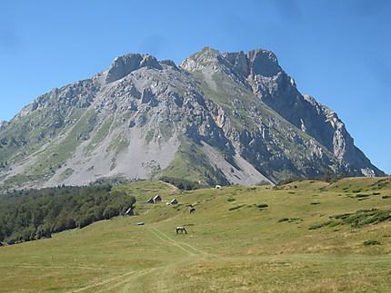 Vasojevicki Kom 2460 m