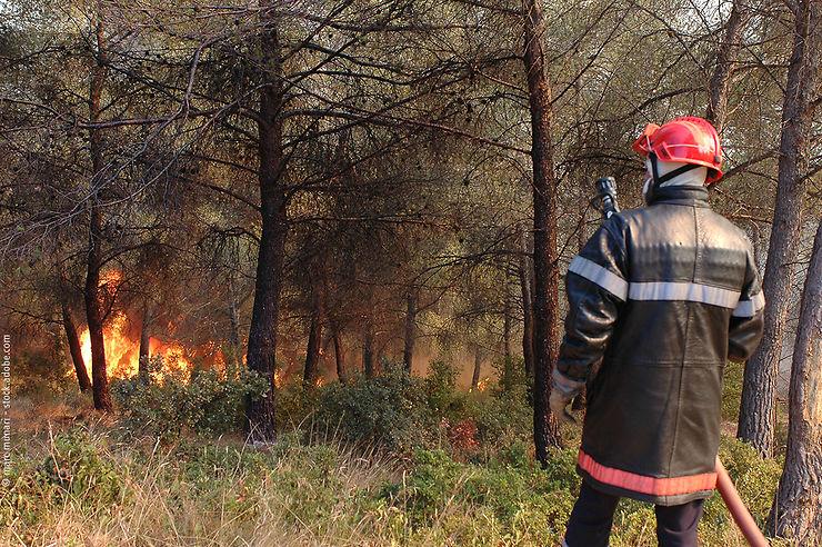 Pratique - Feux de forêt : les bons gestes pour les prévenir et s'en protéger