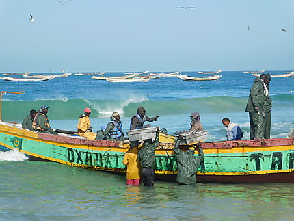 Retour de port sur le port artisanal de Nouakchott