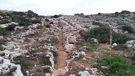 Empreintes mystérieuses sur l'île de Malte