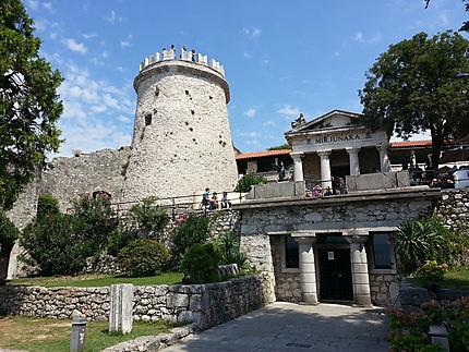 Château de Trsat