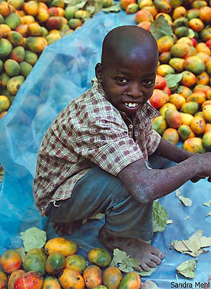 Petit vendeur de mangues