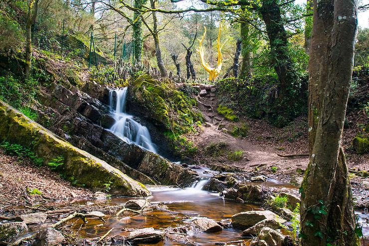 Bretagne : Brocéliande, forêt de légendes