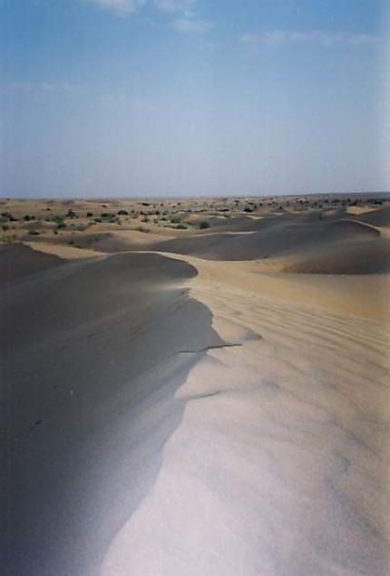 Désert Jaisalmer