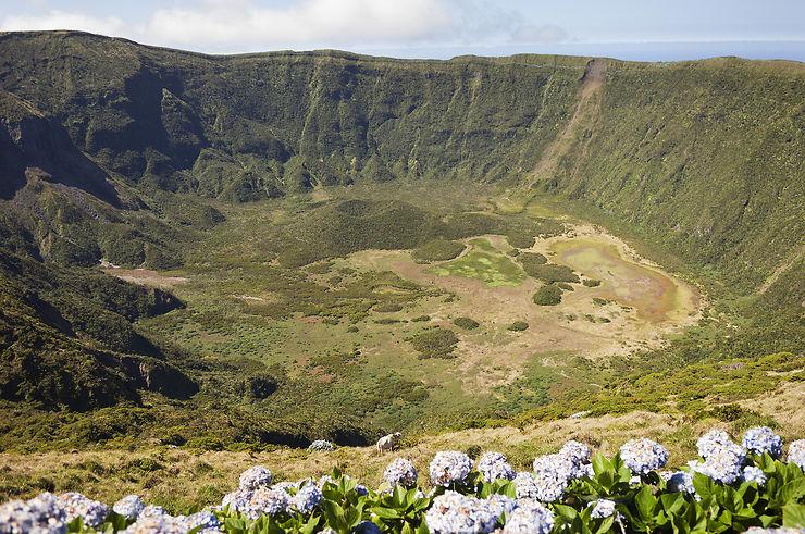 Faial, l'île bleue des Açores