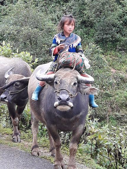 Jeune fille de Hmong fleuris