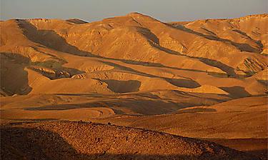 Désert du Néguev (Israël)