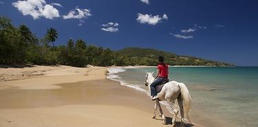 Combiné Les 4 îles de Guadeloupe