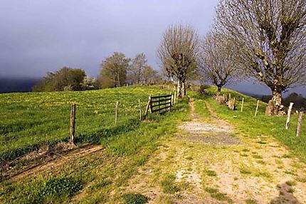 Paysage en Aveyron