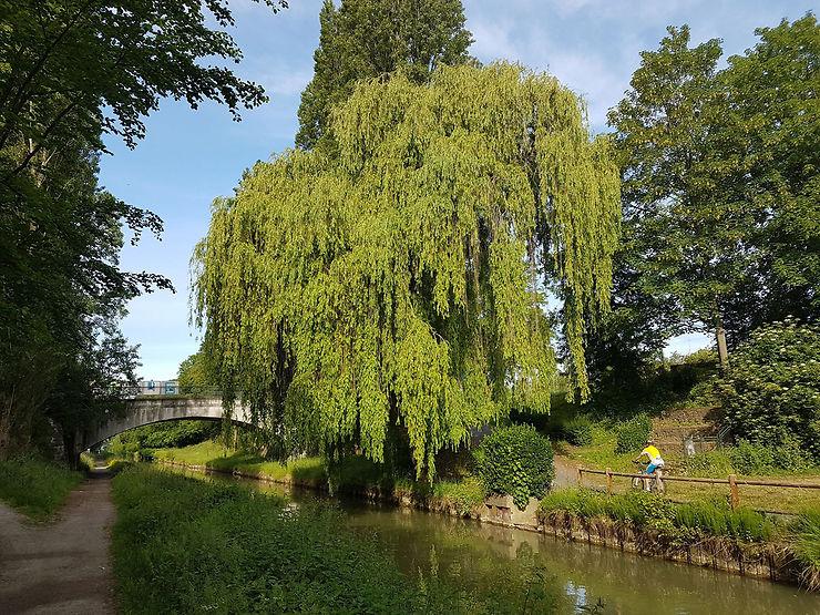 Le canal de l'Ourcq à vélo