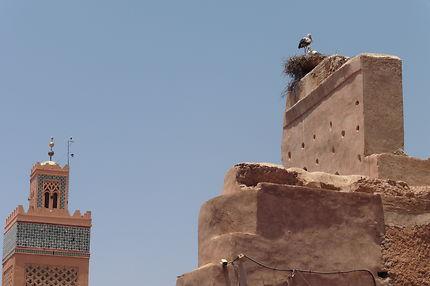 Nid de cigogne, place Moulay El Yazid, Marrakech