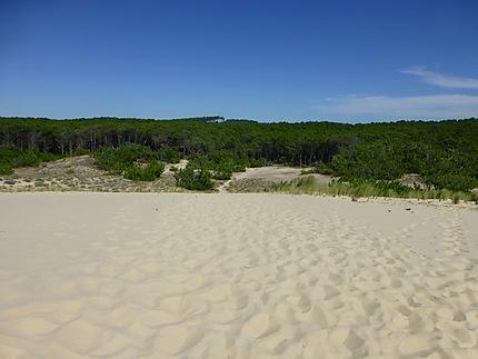 La côte Aquitaine