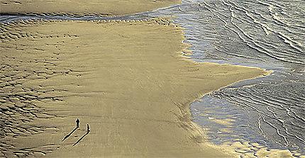 Promenade à marée basse sur la Côte d'Opale