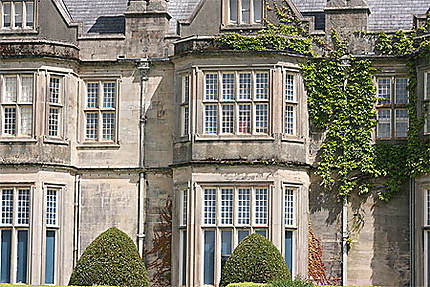 muckross house style victorien muckross house. Black Bedroom Furniture Sets. Home Design Ideas