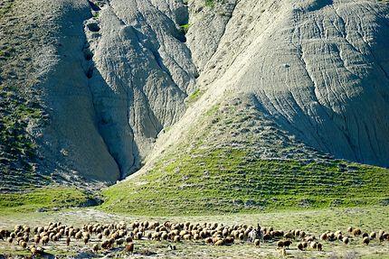 Dans les montagnes du Caucase