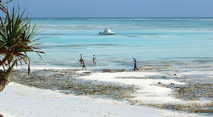 Autochtones sur la plage