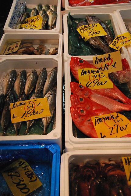 Marché aux poissons de tsukiji Tokyo