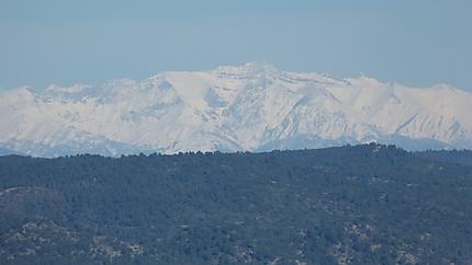 Montagne de Lure enneigée