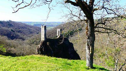 Château de Peyrusse le Roc