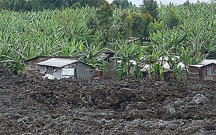Bidonvilles de Goma