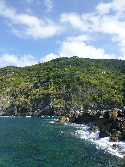 Au pied des sentiers, Cinque Terre