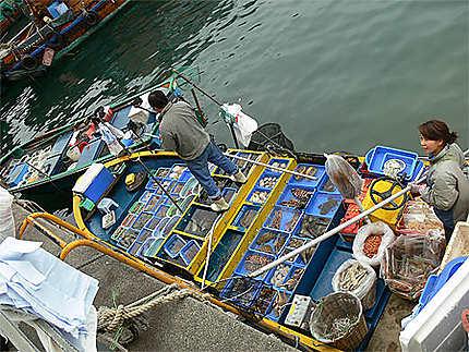 Marché aux poissons HONG KONG