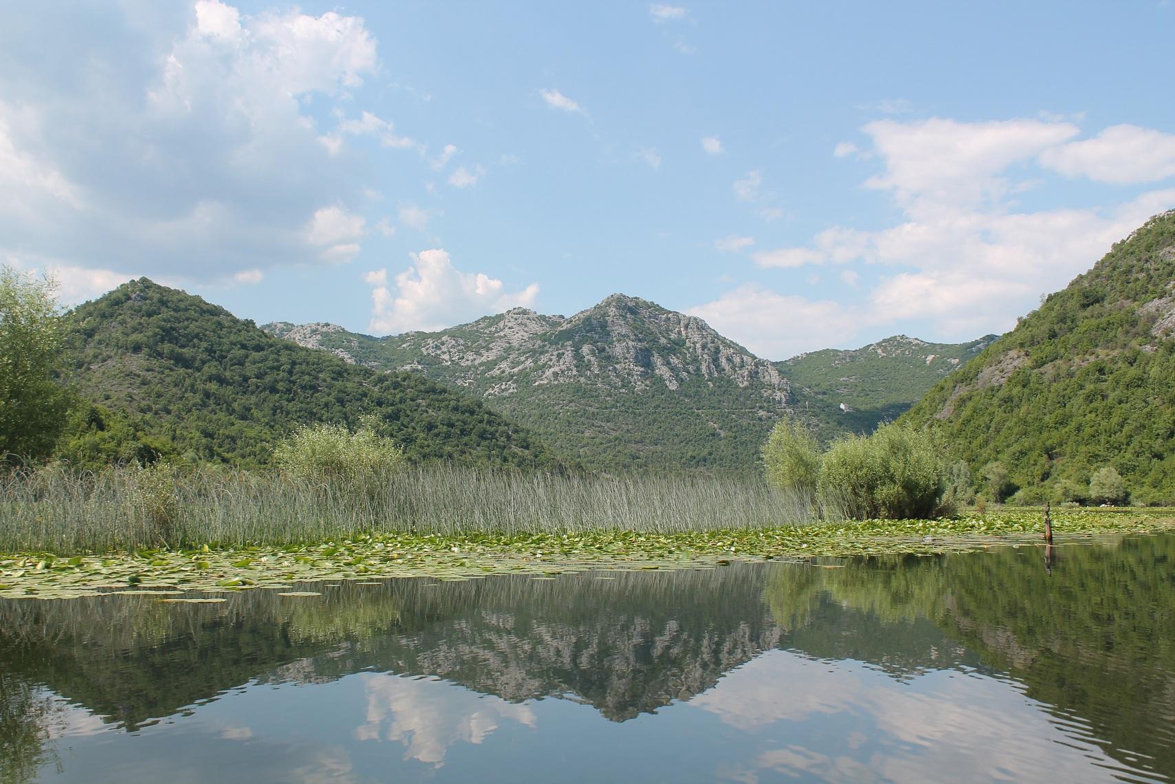 Lac Skadar - Monténégro
