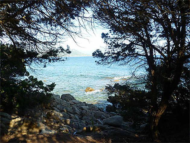 Porto Pollo Corse du Sud