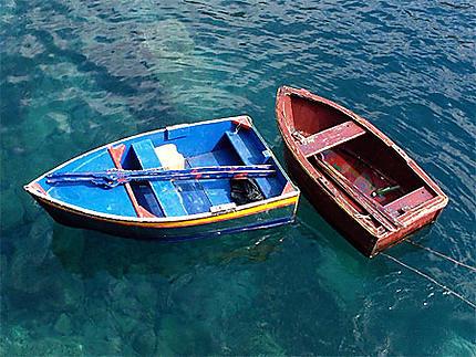 Camara de Lobos, port de pêche pittoresque à Madère