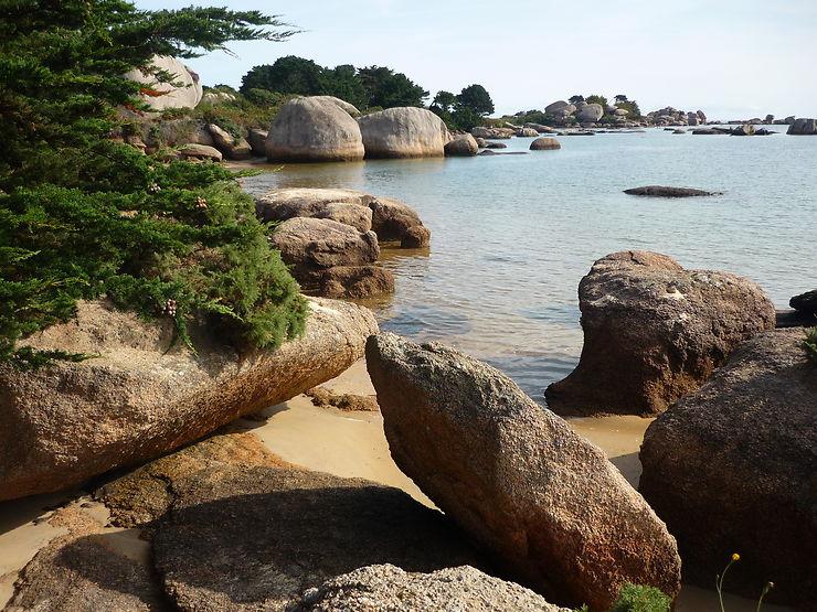 L'île Renote côté Baie de Sainte Anne, Bretagne