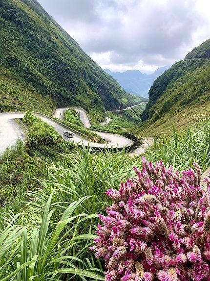 Route au nord du Vietnam