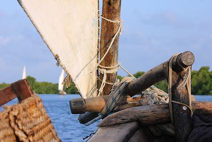Tour en dhow traditionnel, île de Lamu