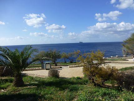 Jardin près de la Grotte Bleue, à Malte