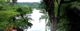 Voyage en Guyane © Scoob