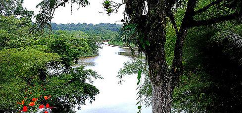 Récit, jour par jour, en direct de Guyane