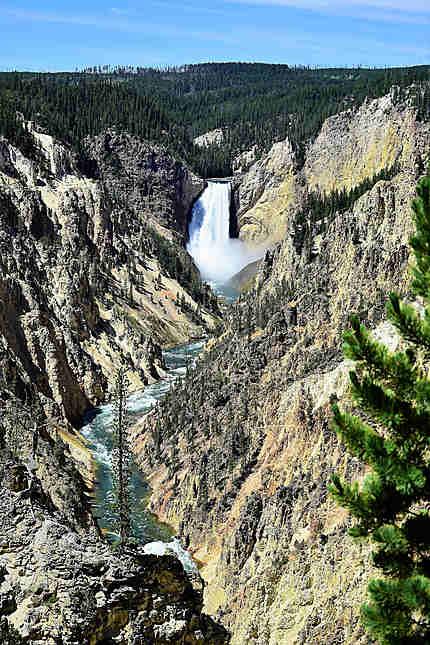 Le grand canyon du Yellowstone