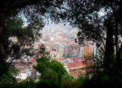 Vue de la colline et du jardin del Turo del Putxet