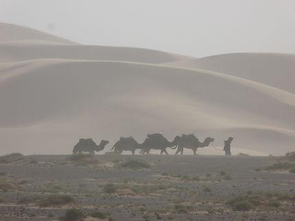 Caravane dans une tempête de sable, Guelmim
