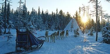 Voyage sur mesure - Laponie Finlandaise