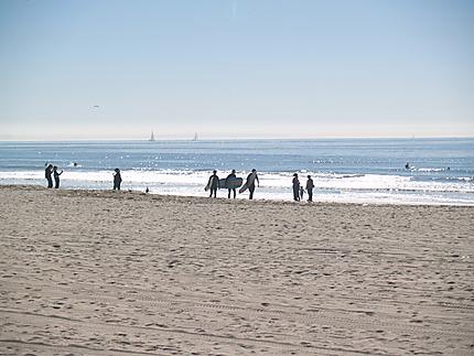 Surfeurs à Venice Beach