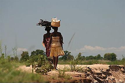 Prise a la volée depuis la pirogue sur la tsiribina