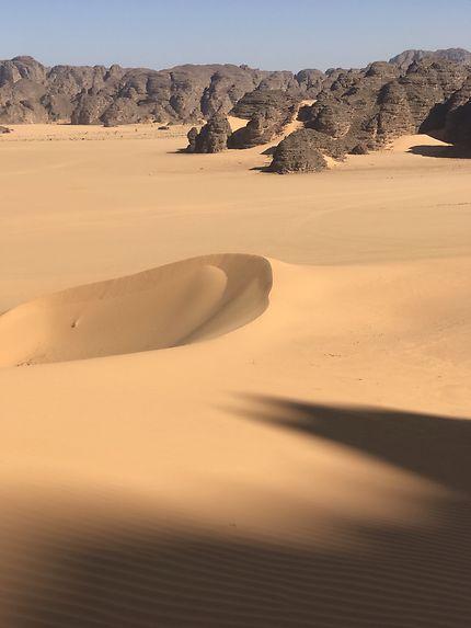 Sud algérien
